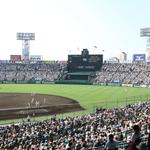週刊野球太郎 日刊トピック#28 記事画像#7