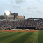 週刊野球太郎 野球エンタメコラム#2 記事画像#6